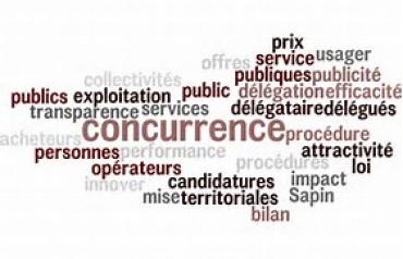 De la concurrence. Contribution de Jean Pierre Battais le 20/06/2017